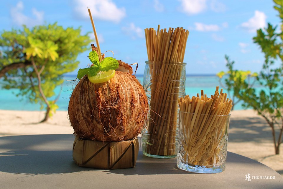 Straws of Straw by Straw in a coconut and straws bundled in glasses with a tropical background. This picture is provided by The Brando Resort.