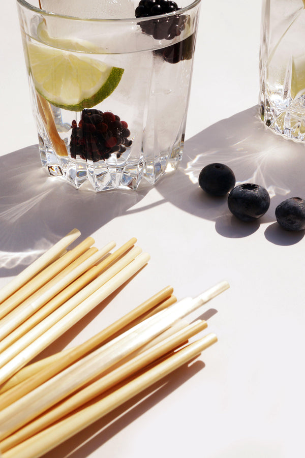 Biodegradable Straw Straws - Tumbler Size (15 cm)