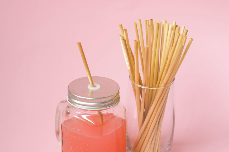1-Pack | Eco-Friendly Bio Straws