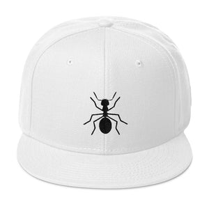 "Snapback BlacK ""ANT"" Hat - Money Is A Defense"