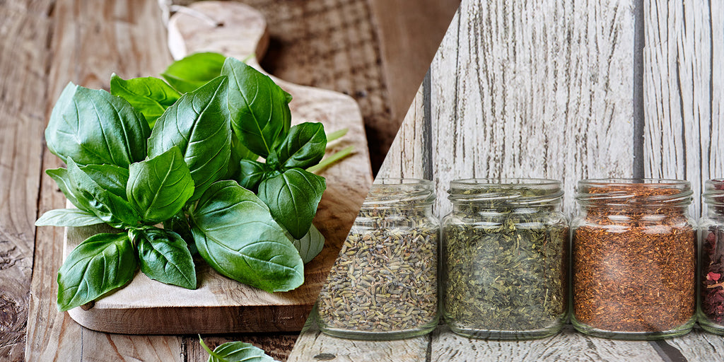 Indoor Herbs to Spice Up Your Winter Cooking