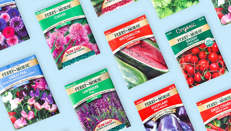 How To Read a Seed Packet