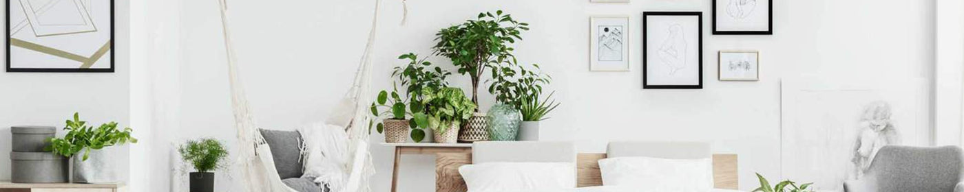 Indoor Baskets and Planters