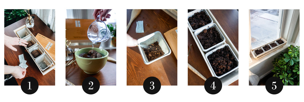 Step by step herb gardening