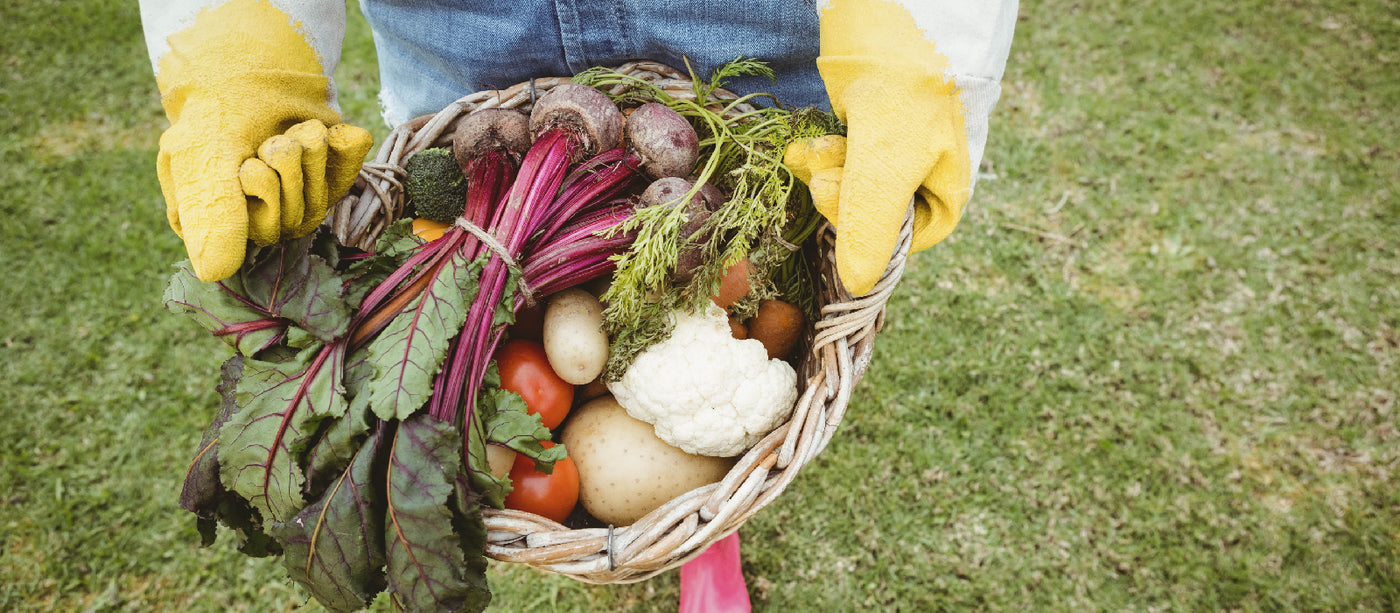 5 Ways To Preserve Your Harvest