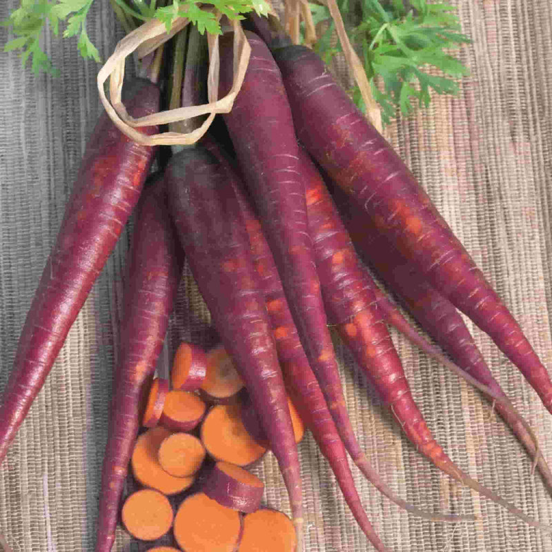 Carrot Cosmic Purple