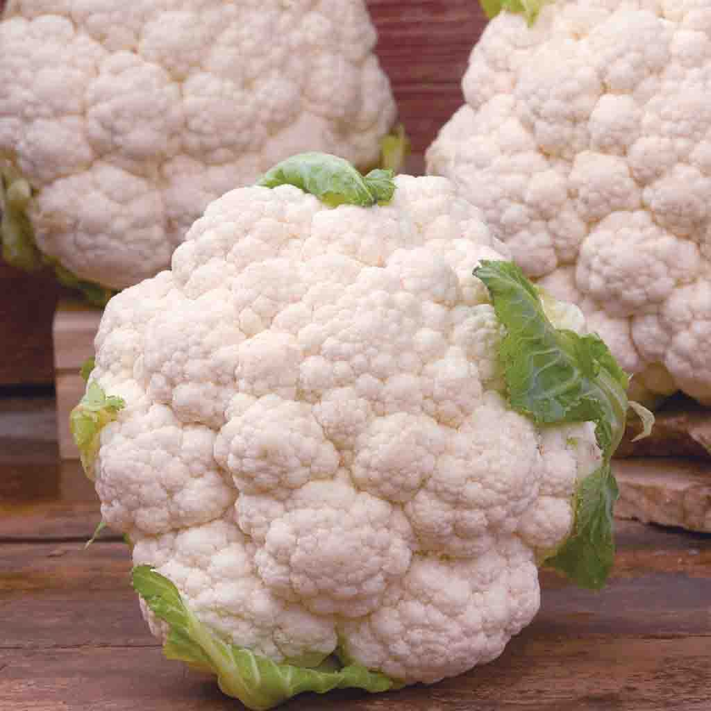 Cauliflower Snowball X