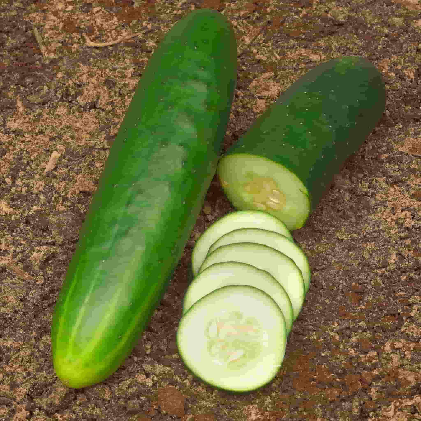 Straight 8 Vegetable Seeds Heirloom select QTY Cucumber