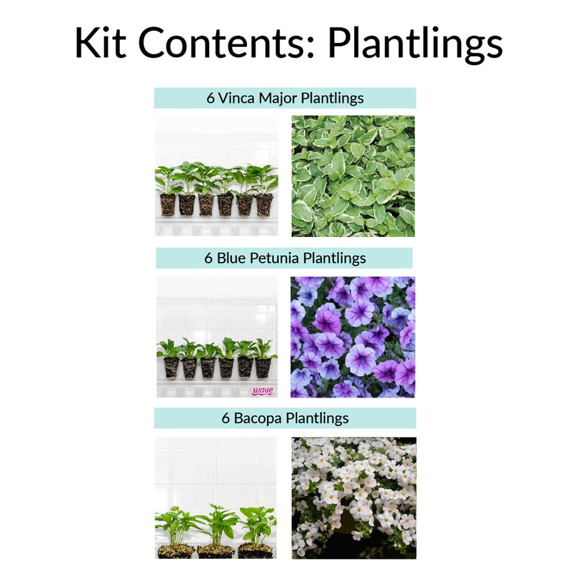 Decorative Container Flowers Gardening Kit