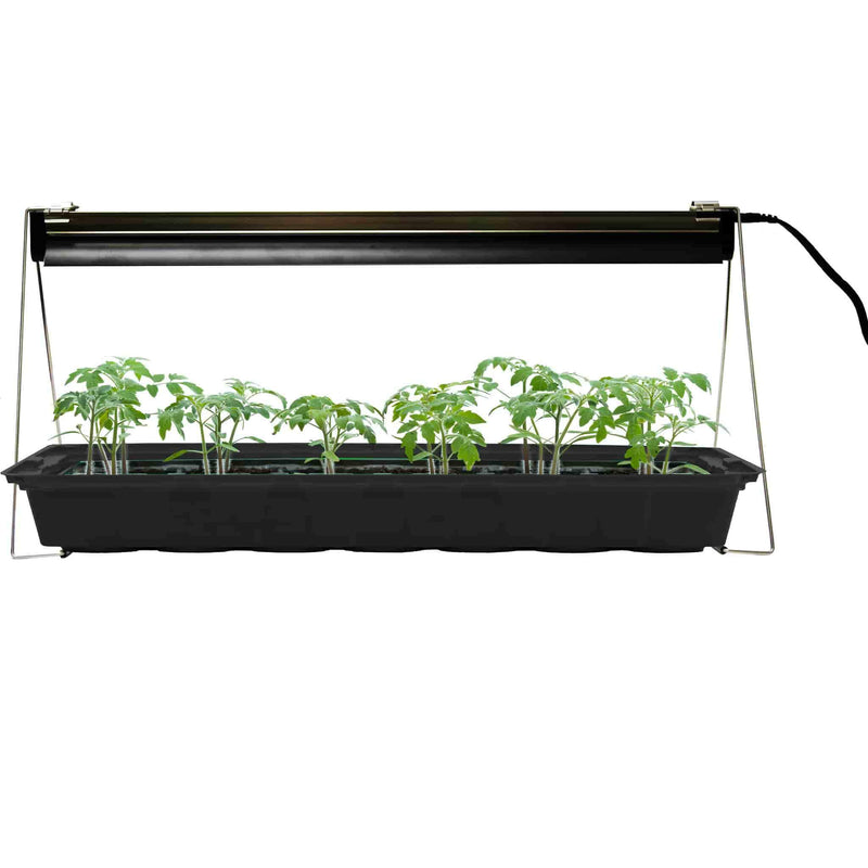 Ferry-Morse Grow Light With Seedlings