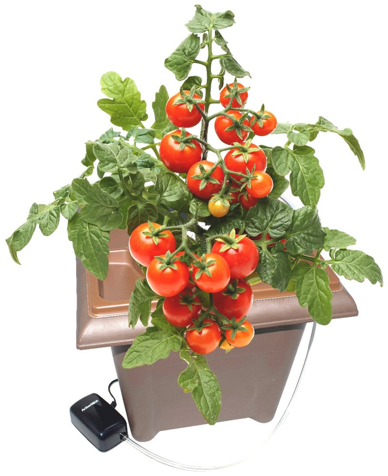 Jiffy Hydro Growing System