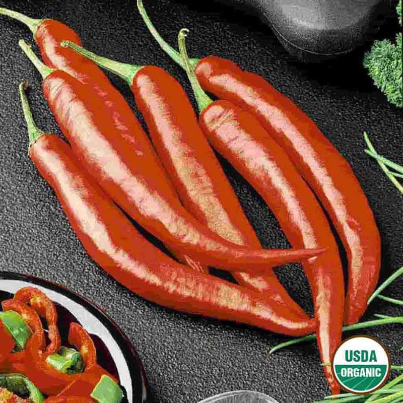 Organic Pepper Cayenne Long Slim Seed