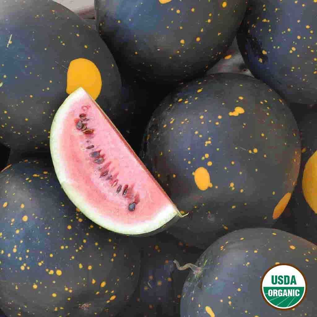 Organic Watermelon Moon and Stars Seed