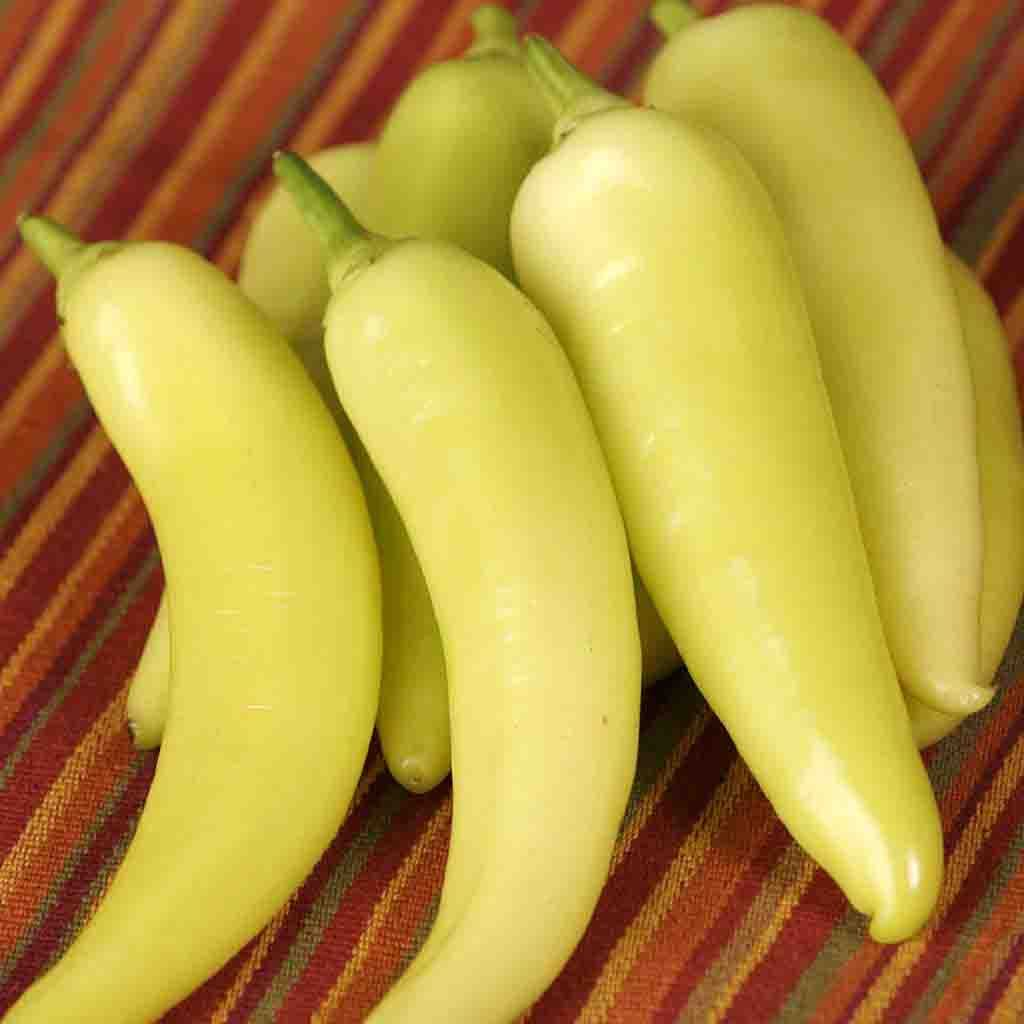 Pepper Sweet Banana Seed
