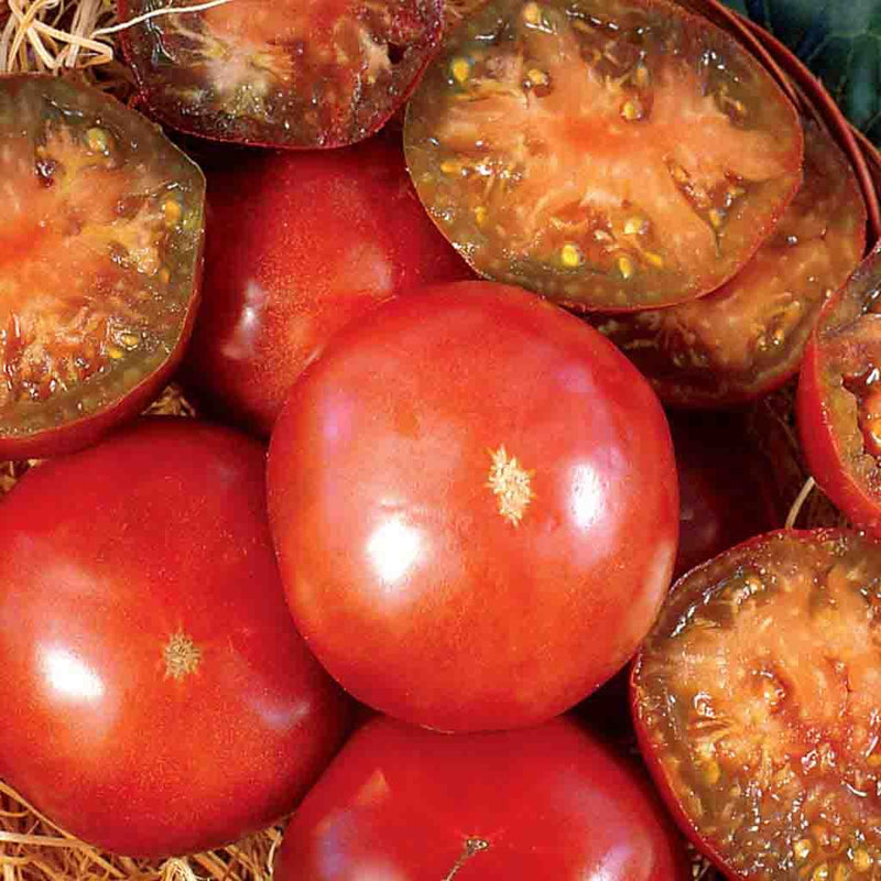 Tomato Black Krim HEIRLOOM Seed