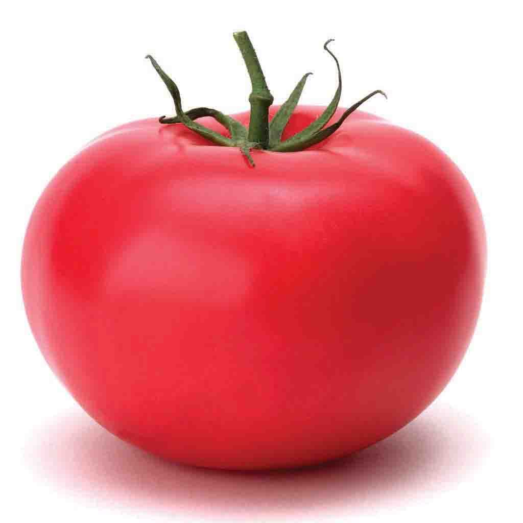 Tomato Garden Leader Monster Seed