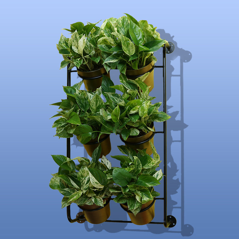 Ferry-Morse Vertical Garden Kit