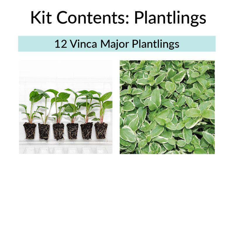 Vertical Garden Kit