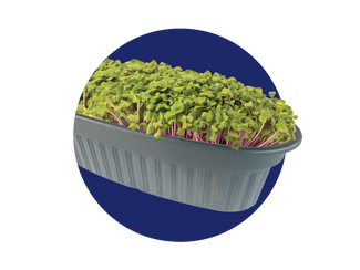 Windowsill Microgreens Kit against a navy blue colored circular background.