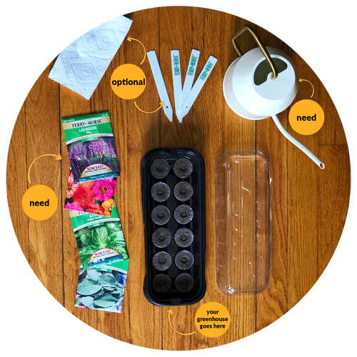 Top-down view of what you'll need to set-up your greenhouse: lukewarm/warm water, greenhouse of your choice and seeds are needed. Optional: plant markers, paper towel and a fork.