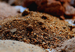 Mounds of soil samples and different types both close-up and out of focus.
