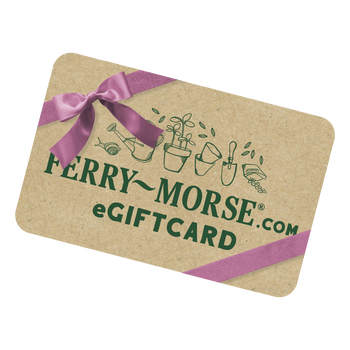 Ferry-Morse eGift Card with purple bow.
