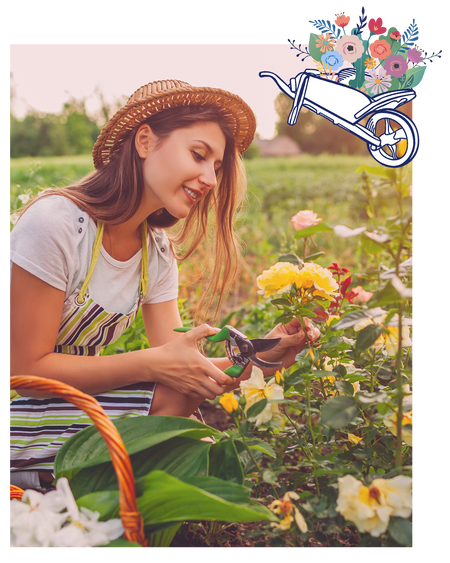 Young woman cutting flowers from her garden for a bouquet.