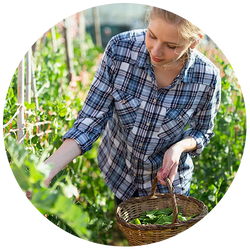White woman harvesting some produce from the garden.