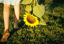 A young girl carrying a sunflower bloom.