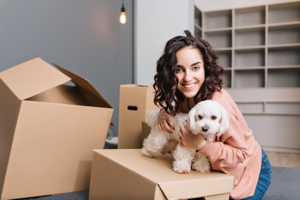 How to Make Your Move with Your Dog As Easy As 1, 2, 3