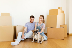 3 Ways to Help Your Pet Cope While Moving House