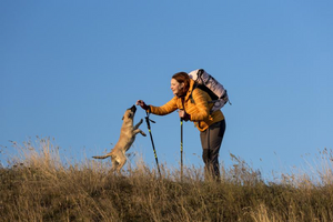 Pro Tips for Taking Your Dog on a Long Hike