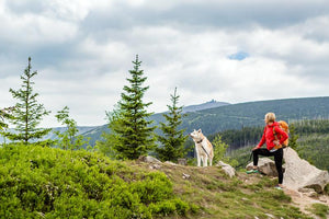 How to Prepare for a Hike With Your Dog