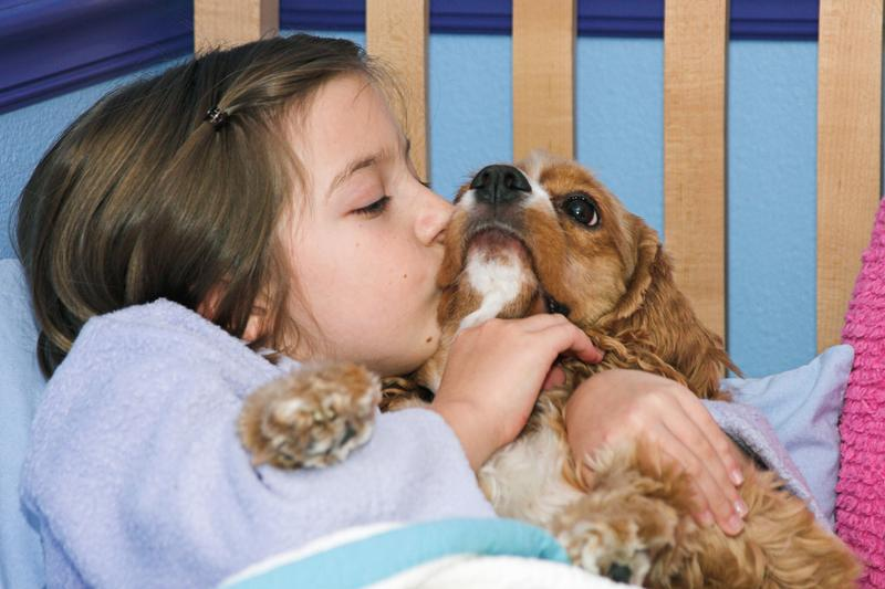 What Factors to Keep in Mind When Getting a Puppy for Your Kids