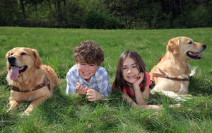 How to Help Your Children and Your Pets Play Well Together