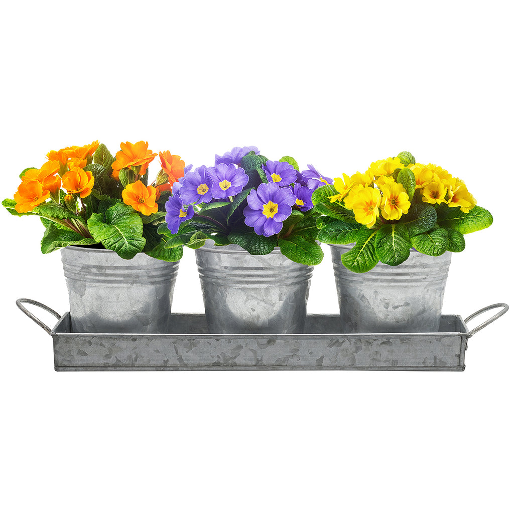 Planter Pots & Tray Caddy Set - Sorbus Home