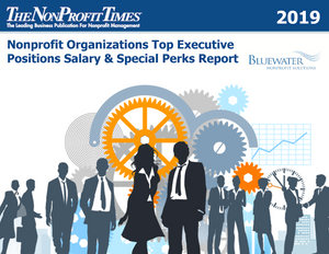 2019 Nonprofit Organizations Top Executive Positions Salary and Special Perks Report