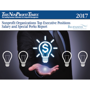 2017 Nonprofit Organizations Top Executive Positions Salary and Special Perks Report