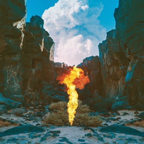 Bonobo - Migration 2LP (+download)