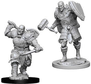 D&D Male Goliath Fighter