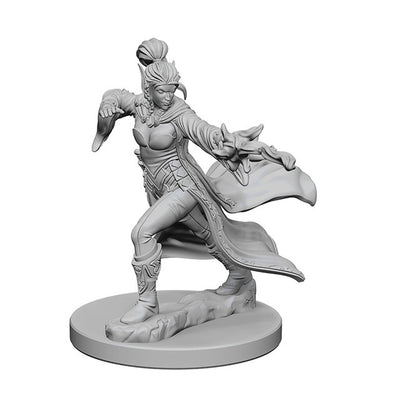 Pathfinder Elf Female Sorcerer