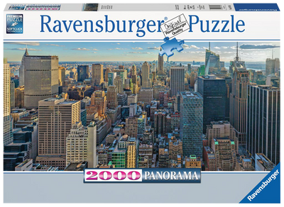 View over New York 2000pc