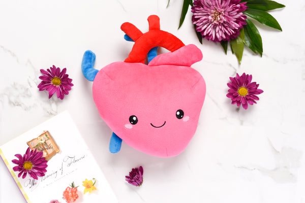 stuffed heart, stuffed heart organ, stuffed organ, stuffed organ heart, heart plush organ, plush organs, plush organ, heart plush, heart plush toy, body parts plush, body parts stuffed organs