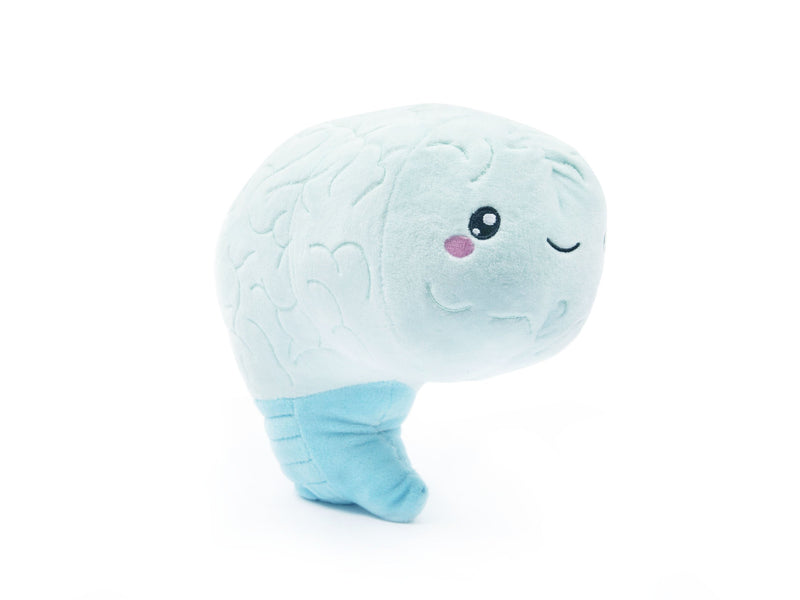 stuffed brain, stuffed brain organ, stuffed organ, stuffed neuron, stuffed brain cell toy, stuffed organ, brain plush, brain, neuron, brain plush organ, plush organs, plush organ, neuron plush, brain cell plush, brain plush toy, brain toy, anatomy plush, body parts plush, stuffed body parts plush, anatomy body parts organ plush