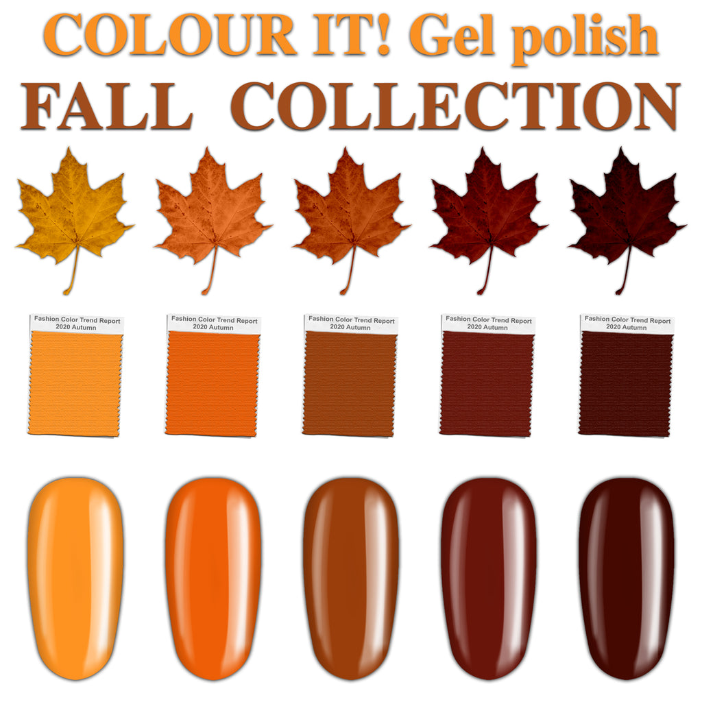 COLOUR IT! FALL COLLECTION