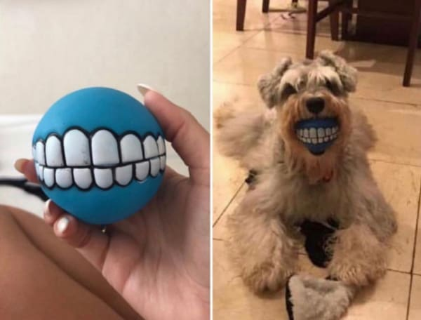 smiley teeth dog ball