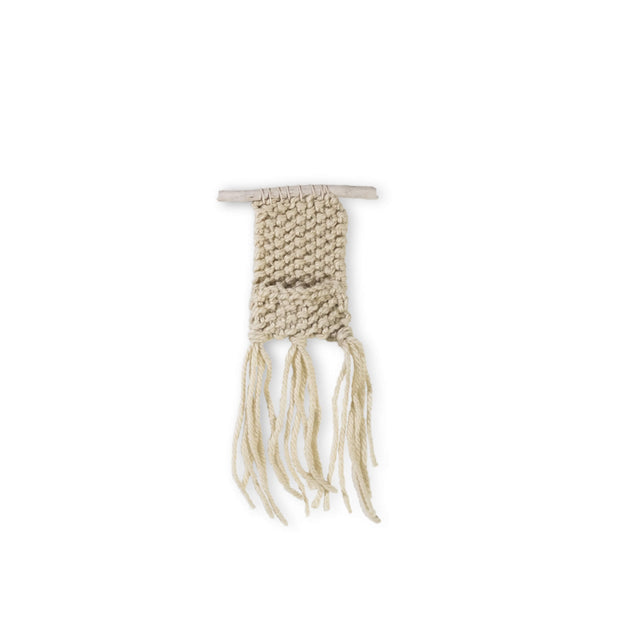 Huxen & Co. Handmade Wall Hanging with Airplant