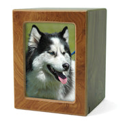 MDF Pet Photo Cremation Urn - Medium