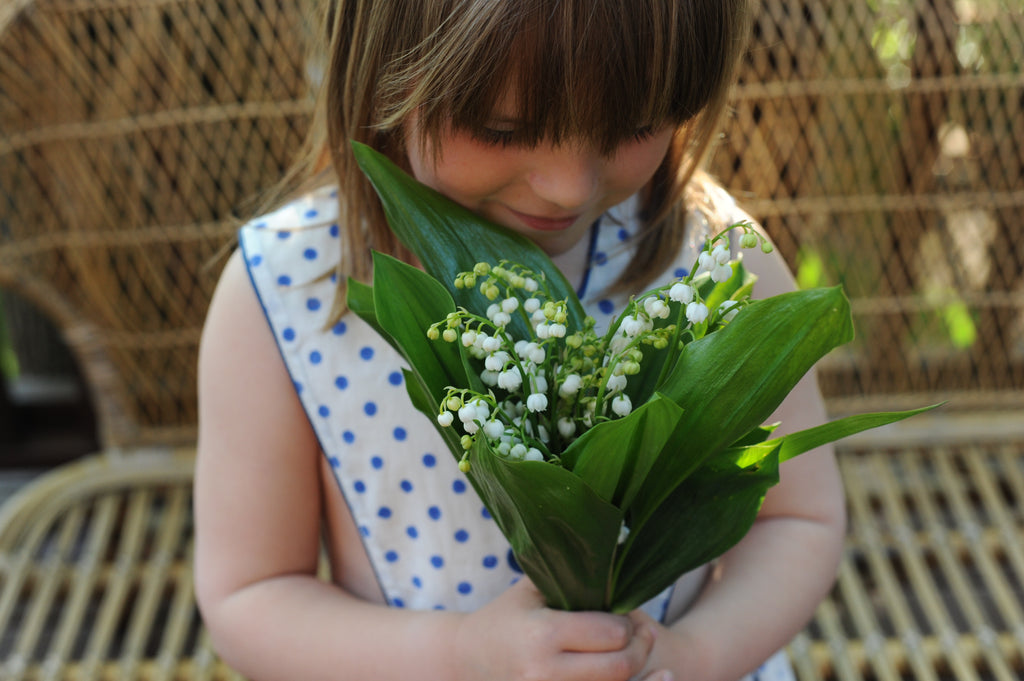 The Lily of the Valley, story of a French tradition