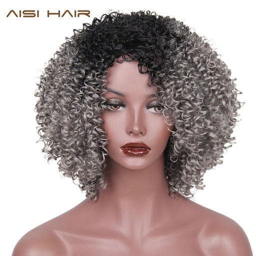 Aisi Hair Synthetic Wigs Long Afro Kinky Curly Ombre Black Gray Hair For Women Christmas High-AISI HAIR AISI Store-T1B/613-EpicWorldStore.com